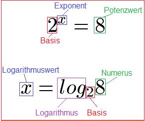 Logarithmische Gleichungen Gewichtsverlust Produkt